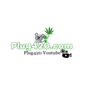 Plug to 420 | Smoke out 4/20 and Celebrate | Plug420 1