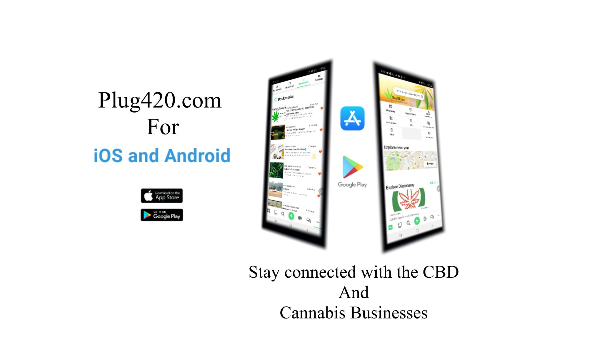 CBD Cannabis Hemp Near Me - Directory 2
